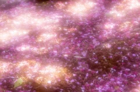 DAPUMP 桜 歌詞 意味